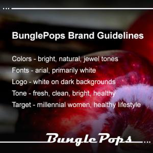 Instagram - BunglePops Brand Guidelines